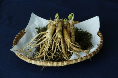 Best testosterone booster for men over 50, ginseng root