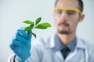 TestoGen review, scientist holding a leaf
