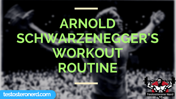 Arnold Schwarzenneger workout routine