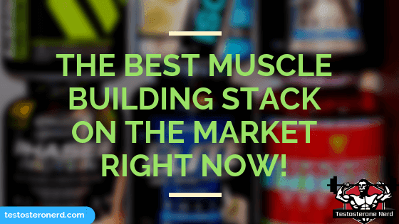 Best muscle building stack on the market