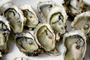 Testosterone boosting foods for men, oysters