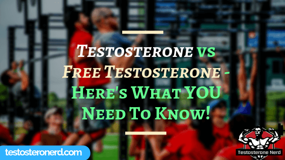 Testosterone vs Free Testosterone