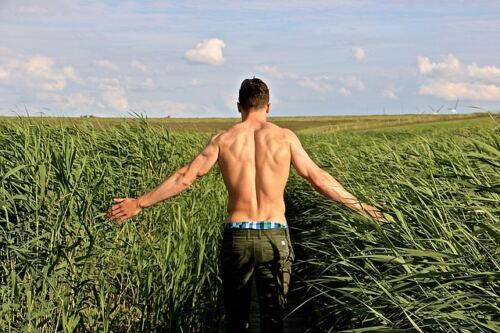 How does a testosterone booster work - man, back muscles